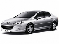 Накладки на пороги для Peugeot 407